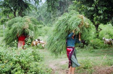 Hardships faced by communities in Uttarakhand