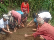 Projects have supported community farmers to sustainably grow cauliflower, beans and cucumbers.