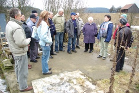 Study tour organized for local farmers on breeding local breeds: mangalica pigs