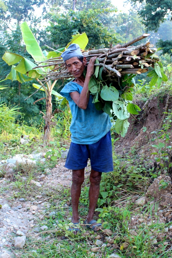 COMDEKS grantee benefits from agroforestry systems, Makawanpur region, Nepal