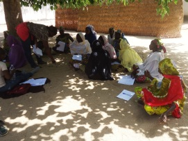 Community consultation process at the landscape level, Bogo Cameroon 3