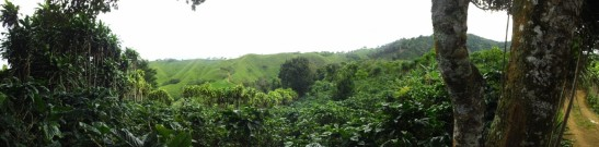 Panoramic view of the higher part of the Jesus Maria Watershed. Main economic activity is coffee farming.