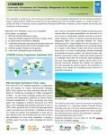 COMDEKS Newsletter-Issue 13