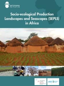 sepls-publication-cover